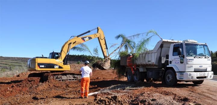 DNIT-doa-árvores-para-municípios-interceptados-pela-BR-116-RS-